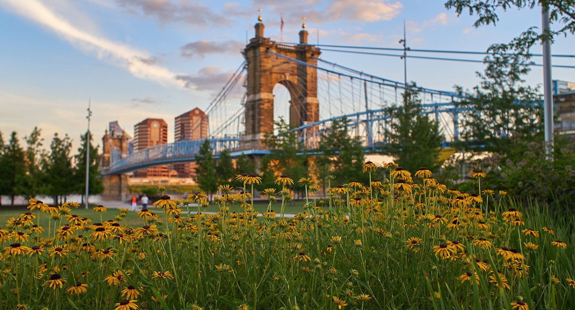 Flowers in Smale Park with the view over the John A. Roebling Suspension Bridge 2020