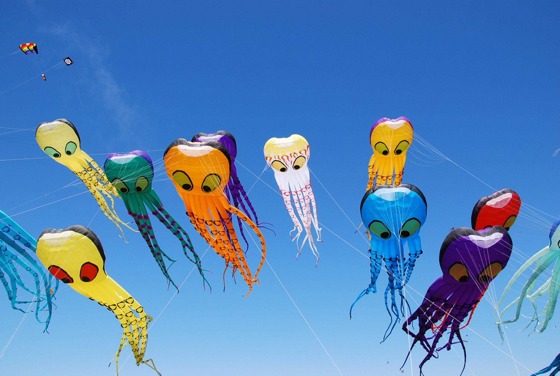 Berkeley Kite Festival in San Francisco 2020 - Best Time