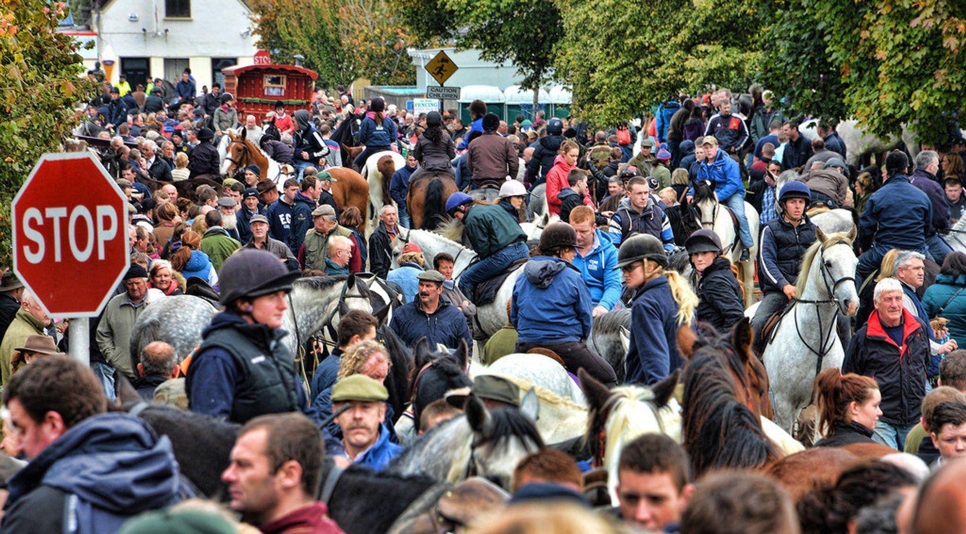 Ballinasloe Horse Fair in Ireland - Best Season 2019