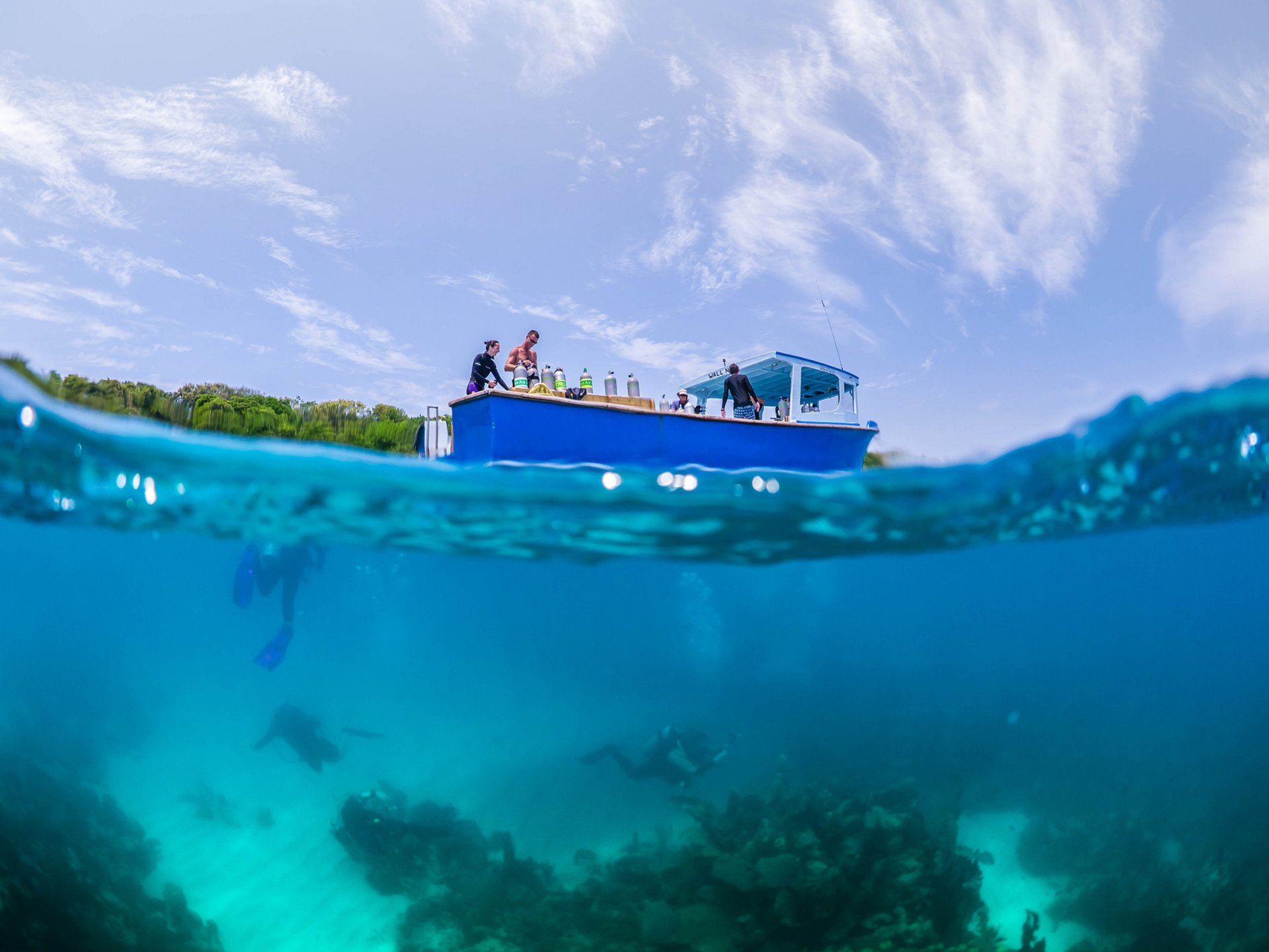 Diving in Honduras 2020 - Best Time
