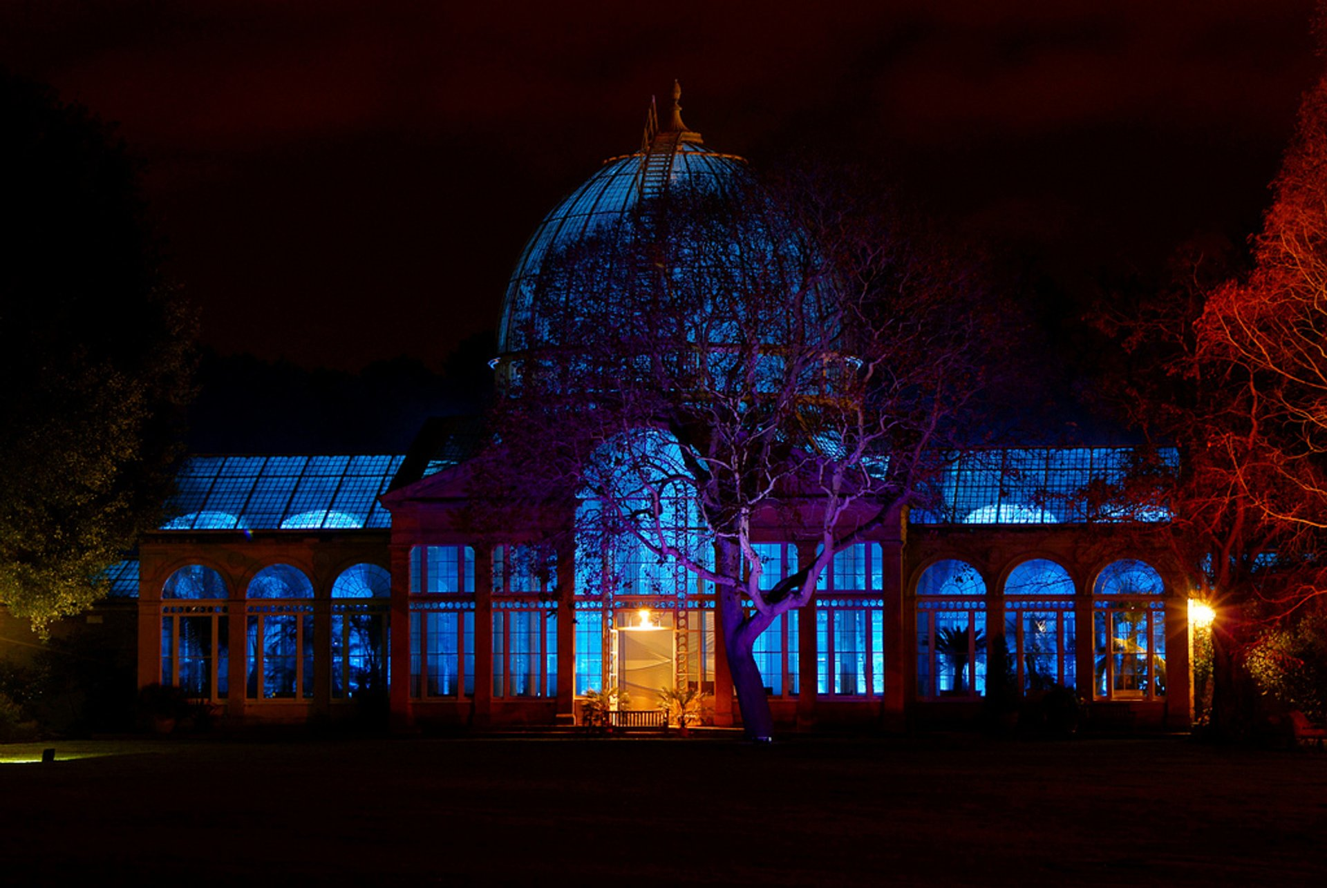 Best time to see Enchanted Woodland at Syon Park in London 2020