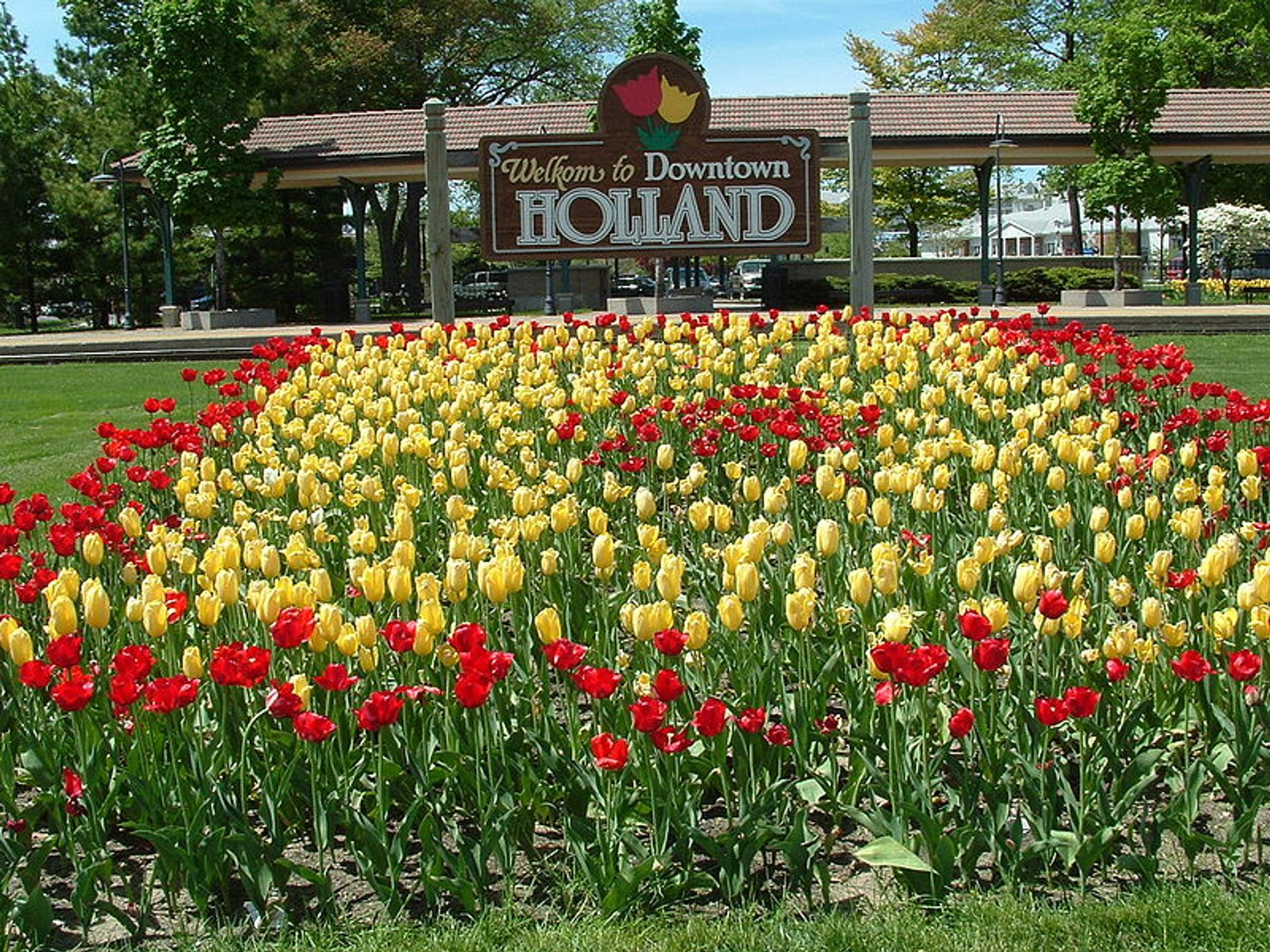 Best time for Tulip Time in Midwest 2020