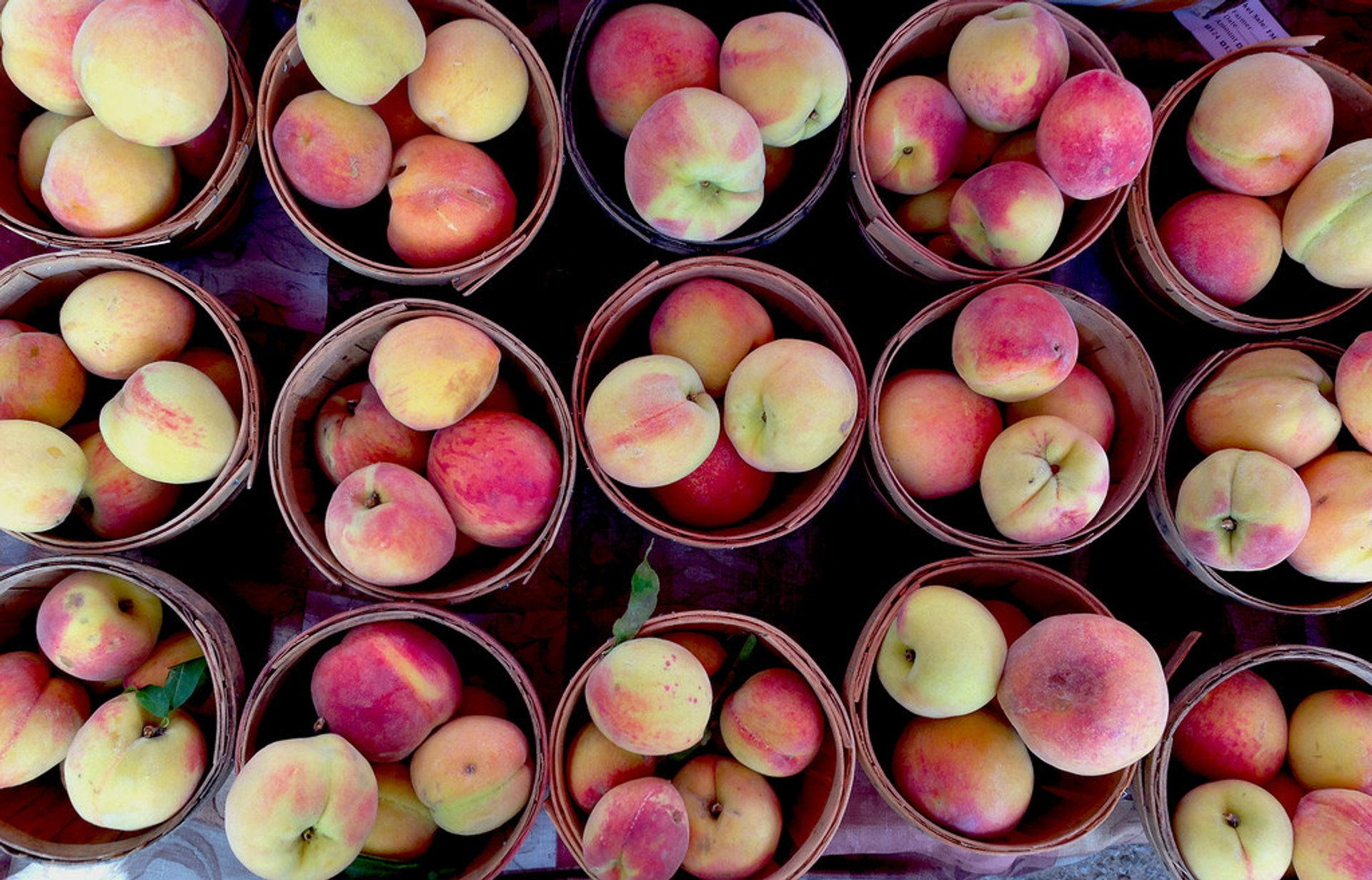 Peach Season in Texas 2020 - Best Time