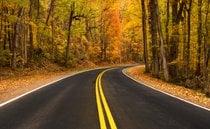 Fall Colors in Gatlinburg, TN