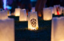Illuminares Lantern Festival