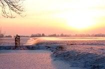 Inverno em Hoge Veluwe
