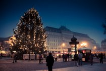 Mercados de Navidad (Vianočné Trhy)