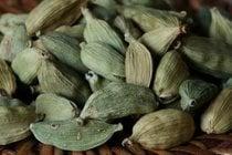 Green Cardamom Harvest