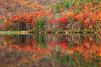 Virginia Fall Foliage