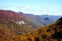 South Carolina Herbstlaub