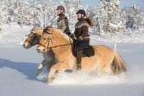 Passeio a cavalo na neve