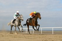 Laytown Beach Races