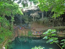 Mayan Jungles