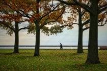 Couleurs d'automne de Milwaukee