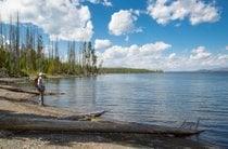 Lac Yellowstone