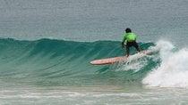 Das Noosa Festival des Surfens