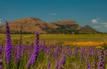 Wichita Mountains