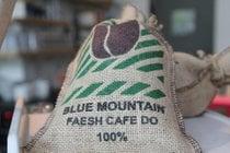 Cosecha de café de montaña azul