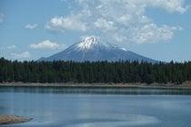 Monte McLoughlin