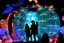 NC Chinese Lantern Festival