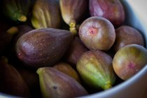 Figs: Farkizzan and Common Fig