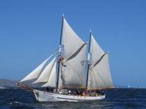 Saison du Yachting