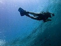 Diving e immersioni