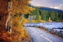 Couleurs de l'automne du lac Tahoe