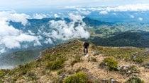 Climbing Mount Apo