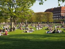 Picnic in the Kongens Have