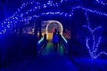 Festival des lumières des jardins de Powell