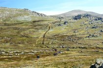 Climbing Mount Kosciuszko