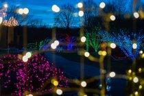 Luzes de Navidad a través de Virginia