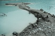 Kawah Putih (White Crater)