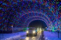 Hamburg Fairgrounds Festival of Lights