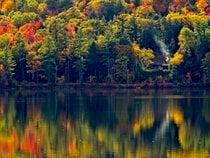 Nuovi colori di autunno di Hampshire
