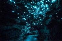 Waitomo Grotte