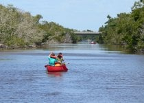 Everglades Bootsabenteuer