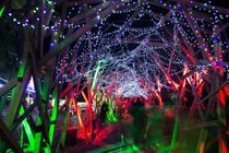 Lumières du zoo de Los Angeles