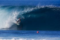 Vanes Triple Corona de Surf