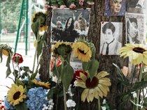 Michael Jackson Memorial Tree