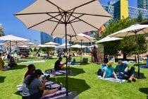 Lane Field Park Market
