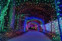 Luzes de Navidad alrededor de Maryland