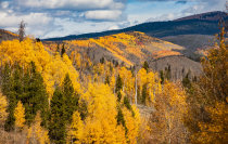 Colores de otoño del Parque Nacional de las Rocky Mountain