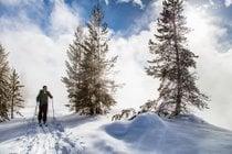 Ski de fond et raquettes