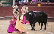 Corrida de Toros (Bullfighting)