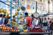 Temporada das frutas