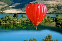 Balloon & Wine Festival della Valle di Temecula
