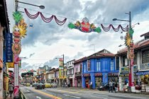 Pongal Festival: Celebrating the Harvest in Little India