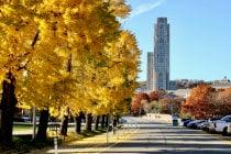 Herbstlaub in Pittsburgh